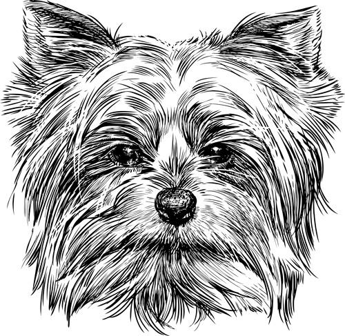 Vectores de perros gratis