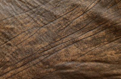 Texturas de piel y de cuero