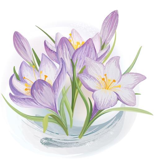 Vectores de flores para descargar gratis