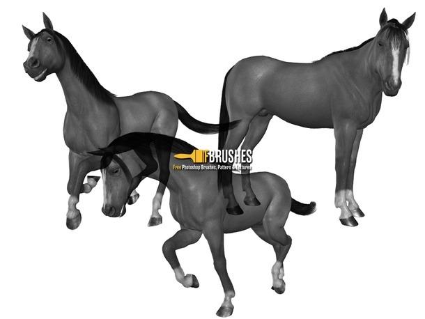 pinceles-caballos