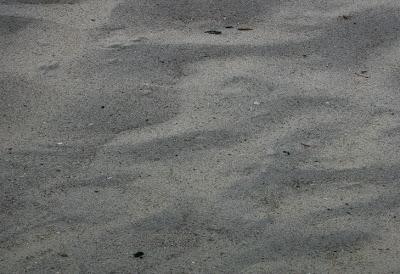 Texturas de arena para diseñadores