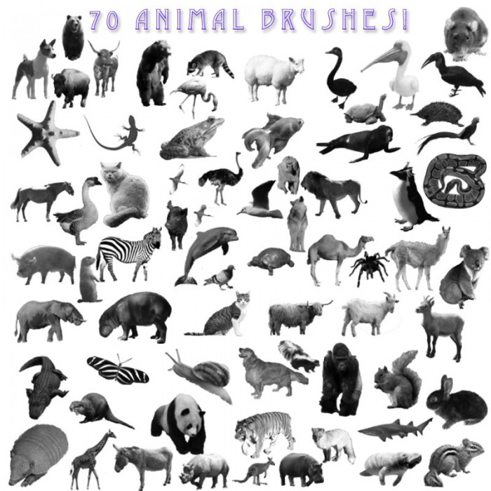 pinceles-animales-photoshop-3