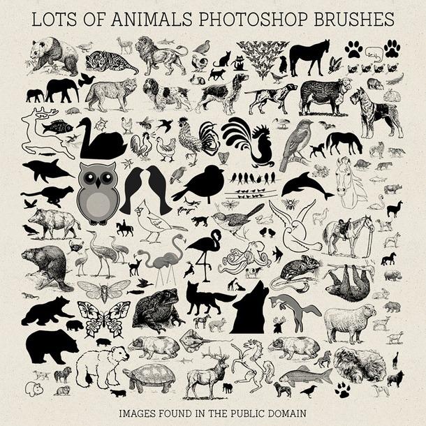 pinceles-animales-photoshop
