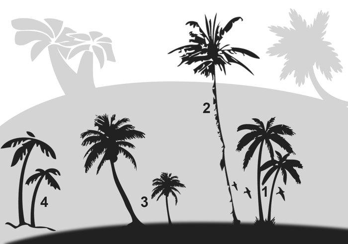 pinceles-palmeras-photoshop