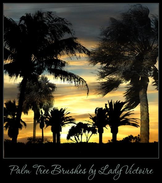 pinceles-palmeras