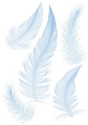 Vectores de plumas gratis