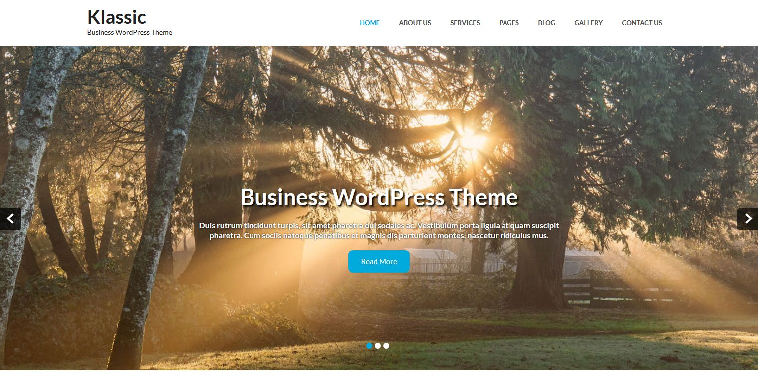 tema-empresa-wordpress-gratis